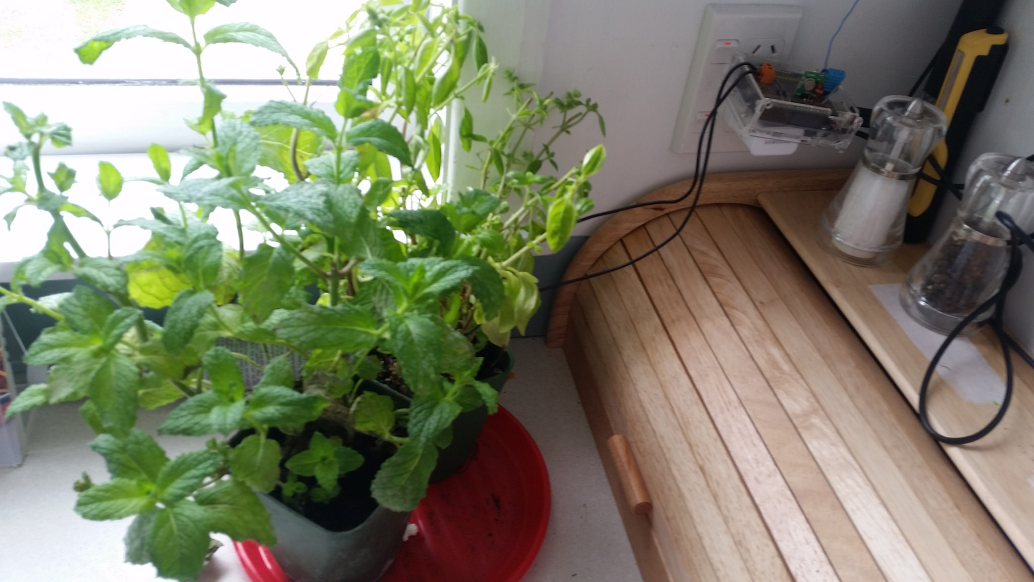 Arduino Environment sensors. Temp, Humidity, Plant water.