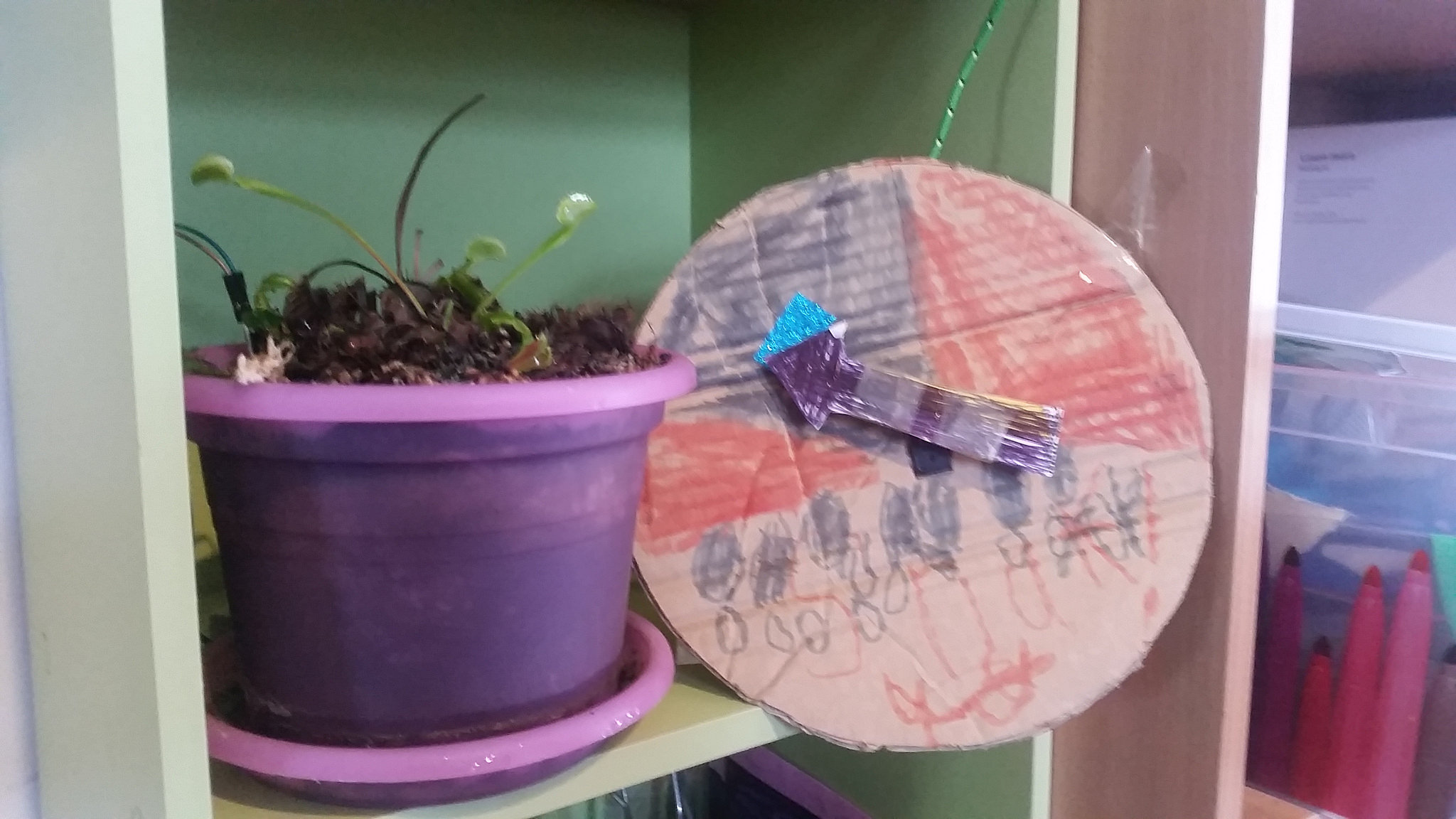 school holiday project - pot plant meter